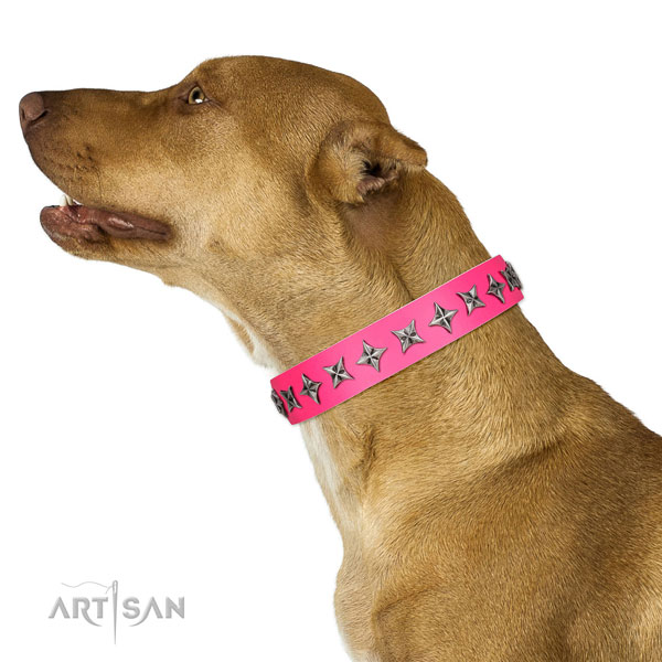 Fine quality full grain leather dog collar with significant adornments