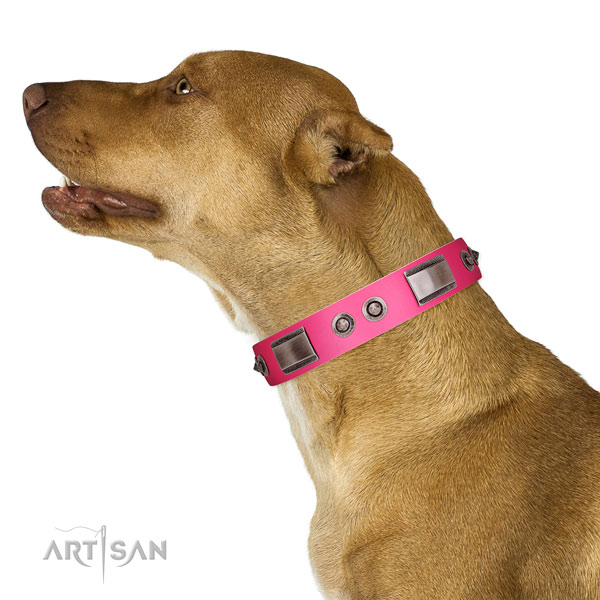 Stylish design full grain genuine leather dog collar with decorations