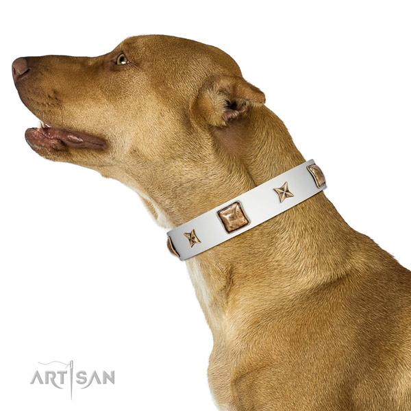 Inimitable full grain genuine leather dog collar with decorations