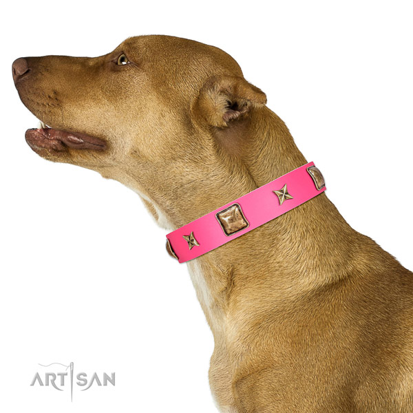 Leather dog collar of gentle to touch material with stylish design decorations