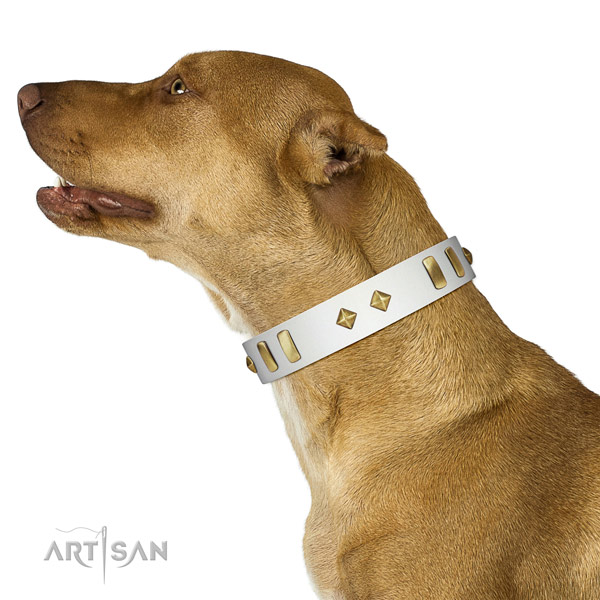 Fancy walking reliable full grain natural leather dog collar with adornments