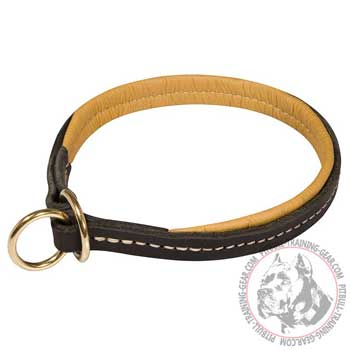Pitbull Choke Collar with Neat Stitching