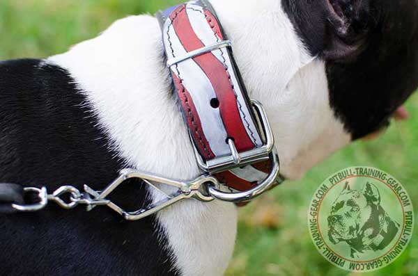Leather Dog Collar for Pitbull with Durable Fittings