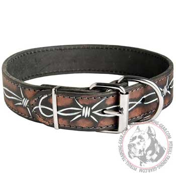 Leather Pitbull Collar with Nickel Plated Hardware
