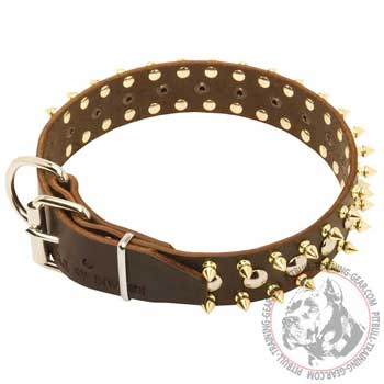 Leather Pitbull Collar with Steel Nickel Plated Buckle for Proper Training