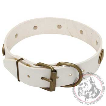 Fabulous Design White Leather Dog Collar with Strong Brass Hardware