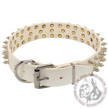 White Leather Pitbull Collar with Reliable Nickel-Plated Buckle and D-Ring