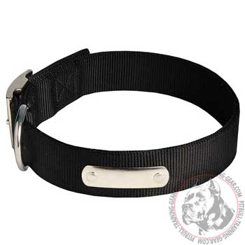 High Quality Training Nylon Pitbull Collar