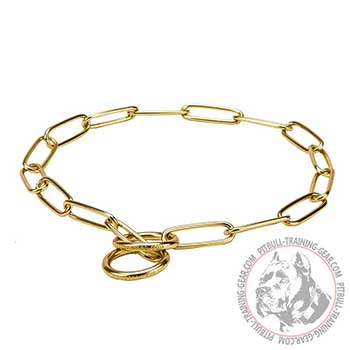 Pit Bull Brass Choke Collar with Attachment Ring