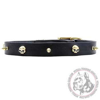 Pit Bull Leather Collar with Brass Skulls and Spikes
