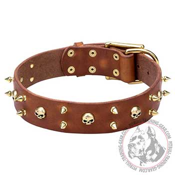 Pit Bull Dog Leather Collar for  Walking