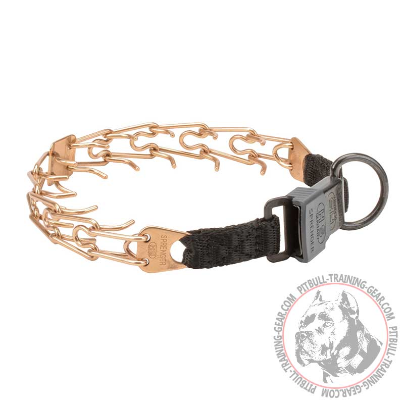 Buy Curogan Pitbull Prong Collar Lock Buckle Behavior