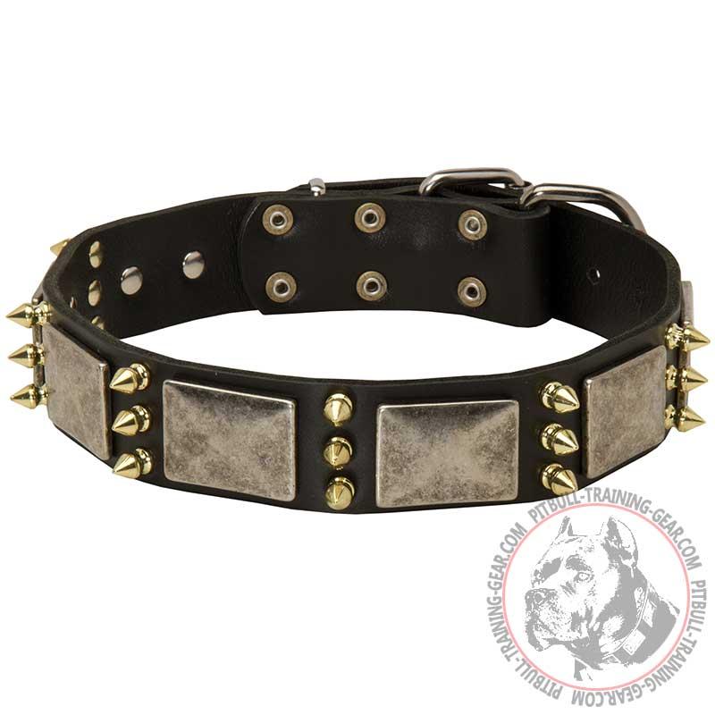 Buy Decorated Leather Pitbull Collar | Designer Dog ...