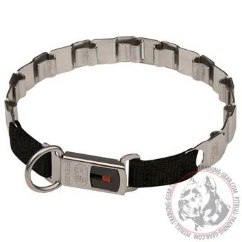 Stainless steel neck tech fun Pitbull collar with quick release buckle