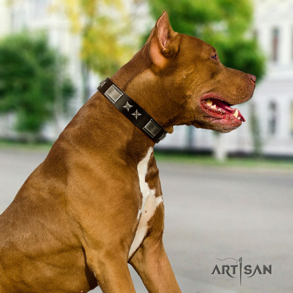 Pitbull easy to adjust genuine leather dog collar with exquisite studs