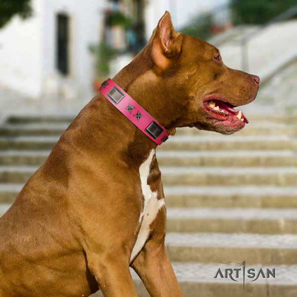 Pitbull comfortable natural genuine leather dog collar with incredible studs