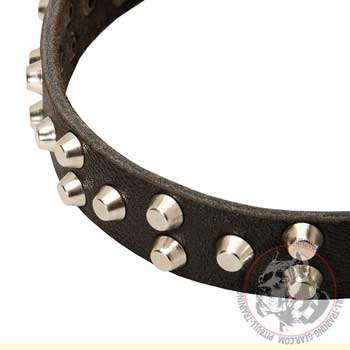Pyramid studs adornment of leather dog collar for Pitbull