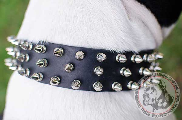 Nickel Decorations on Leather Dog Collar for Pitbull Breed
