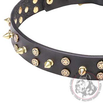 Brass Decoration on Leather Dog Collar