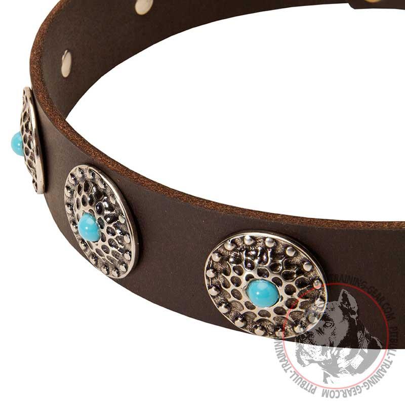 Leather Dog Collar: Leather Dog Collar Pitbull