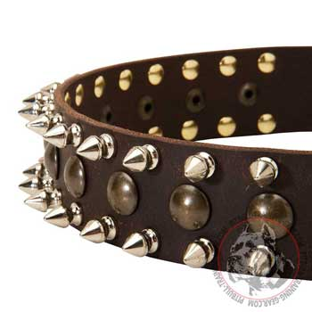 Spikes and Studs on Fashion Training Leather Dog Collar for Pit Bull