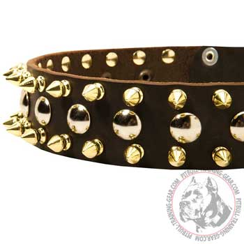 Spikes and Studs on Adjustable Leather American Pit Bull Terrier Collar