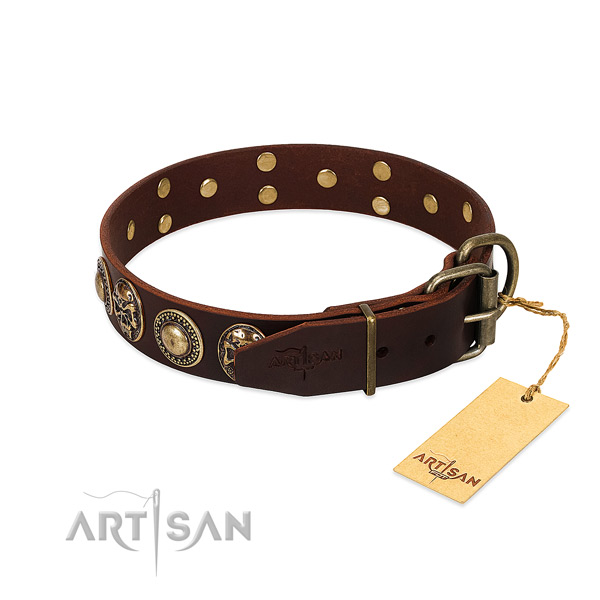Corrosion resistant embellishments on stylish walking dog collar