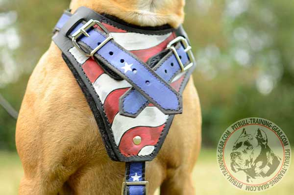 Chest Plate of Leather Handmade Pitbull Harness