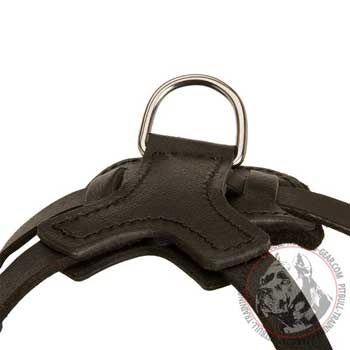 D-ring on leather dog Harness light Weight for Training