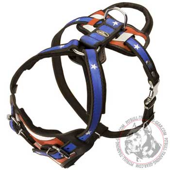 Fittings of Leather Pitbull Harness will not Break Easily