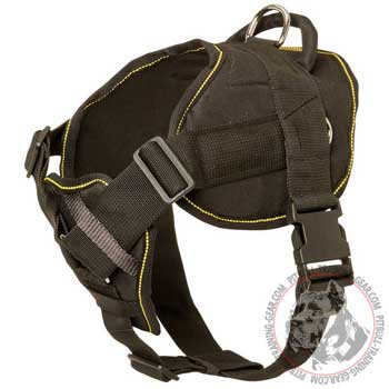 Nylon dog harness for Pitbull with cushioned chest plate
