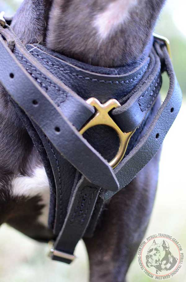 Padded Chest Plate on Leather Dog Harness for Absorbing the Shock
