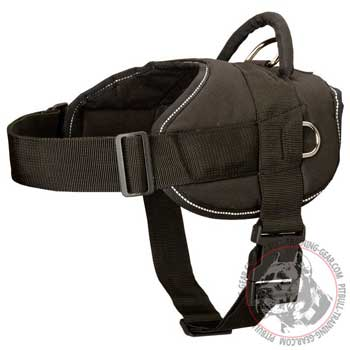 Nylon Pit Bull Harness Heavy-Duty Stitched with Light Reflective Thread