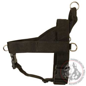 SAR nylon harness for Pit Bull with special patches