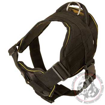 Pit Bull harness for pulling activities