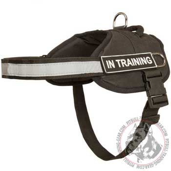 Nylon Pitbull harness for service dogs and training