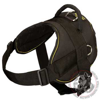 Lightweight Training/Walking Nylon Harness for Pitbull