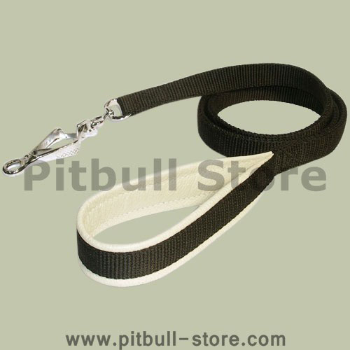 Quality Nylon Pitbull Leash with Herm Sprenger Snap Hook
