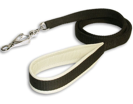 Stylish Nylon Dog Leash with Support Material on the Handle