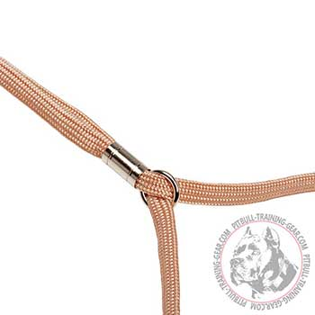 Nickel Plated Stopper on Pitbull Dog Show Leash