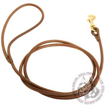 Round Leather Dog Lead for Pit Bull with Heavy-Duty Brass Snap Hook