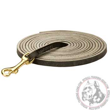 Professional Leather Dog Leash for Pit Bull with Reliable Brass Hook