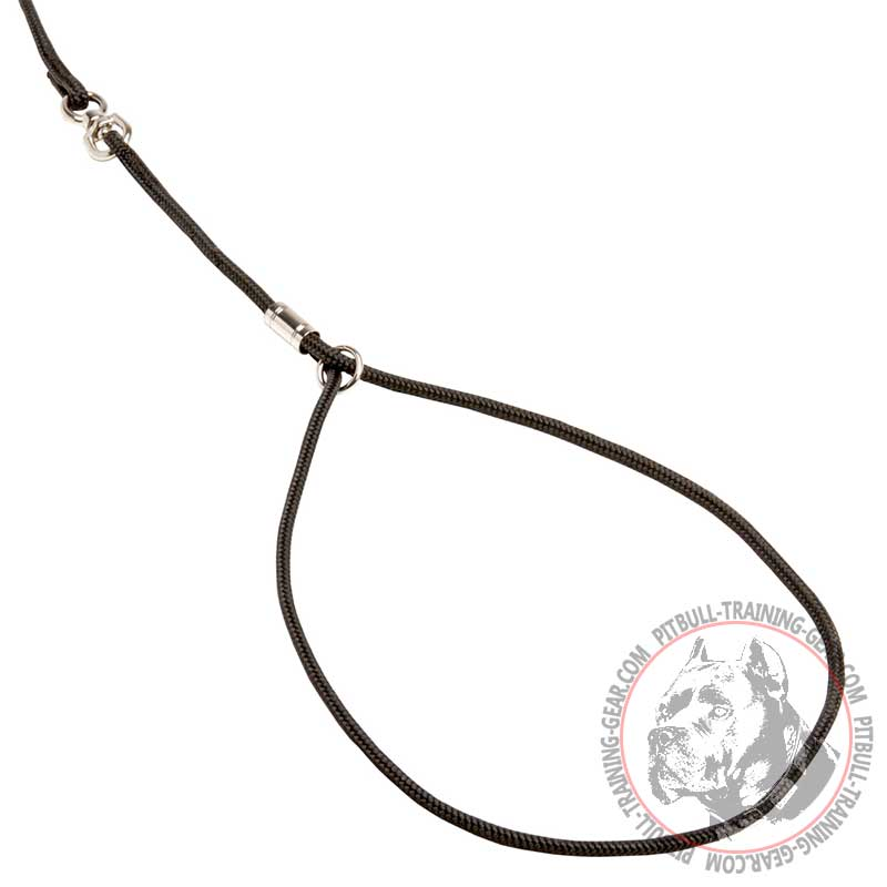 get round nylon combo pitbull leash collar