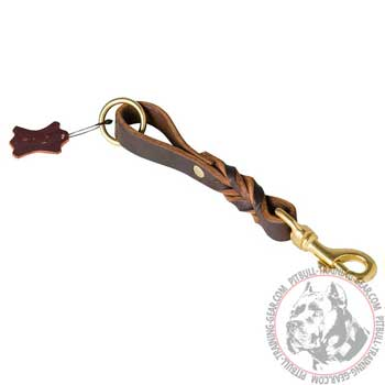 Braided Leather Dog Lead for Pitbull with Heavy-Duty Brass Fittings