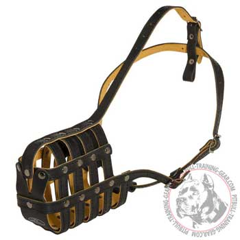 Leather Cage American Pit Bull Terrier Muzzle with Soft Padded Nose Area