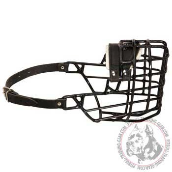 American Pitbull muzzle wire for winter with easy adjustable head strap