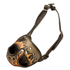 Painted Leather Pit Bull Terrier Muzzle with Adjustable Straps