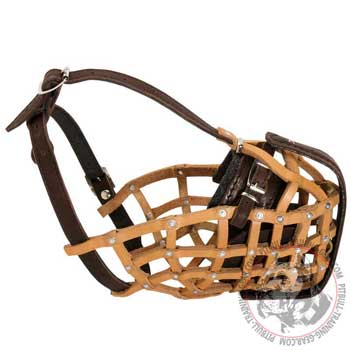 Attack Training Basket Leather Muzzle for Pitbull