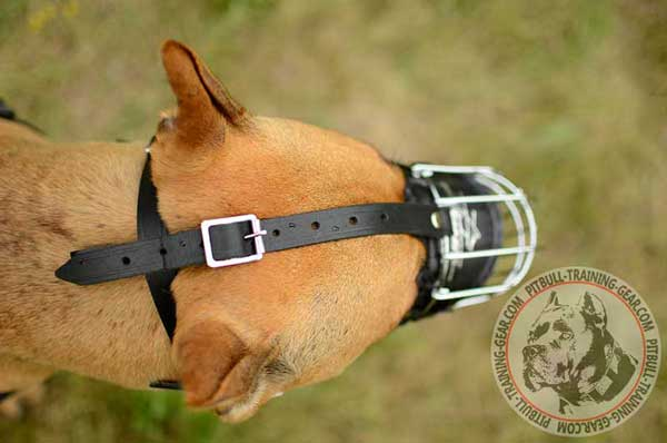 Pitbull Muzzle Wire Adjustable with Straps