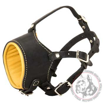 Leather Pitbull Muzzle Soft Nappa Padded for Better Comfort